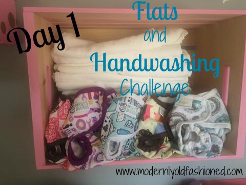 Flats and Handwashing Challenge Day 1: Why?